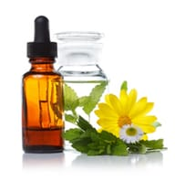 Natural Remedies: Using Flower Essence to Heal Your Pet