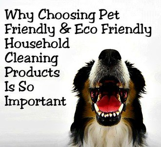 Non-Toxic & Pet Friendly Cleaning Solution