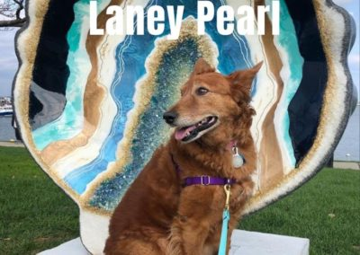Miss Laney Pearl America's Hometown Hound contestant
