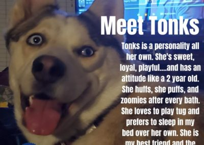 Tonks America's Hometown Hound contestant