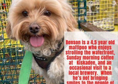 Benson America's Hometown Hound contestant