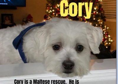 America's Hometown Hound contestant Cory Maltese