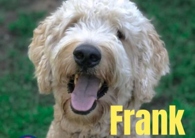 America's Hometown Hound contestant Frank