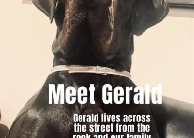 Gerald America's Hometown Hound contestant