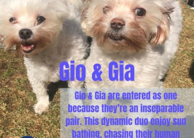 Gio and Gia America's Hometown Hound contestant