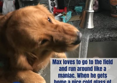 America's Hometown Hound contestant Max