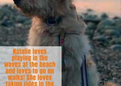 America's Hometown Hound contestant Natalie