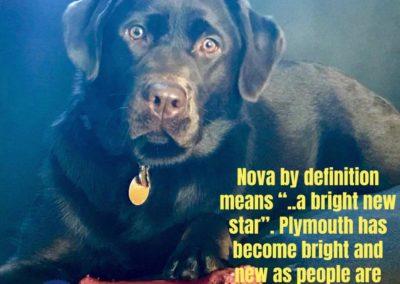 America's Hometown Hound contestant Nova