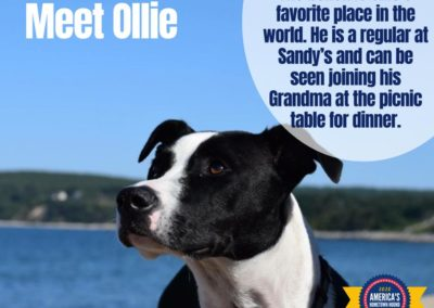 America's Hometown Hound contestant Ollie