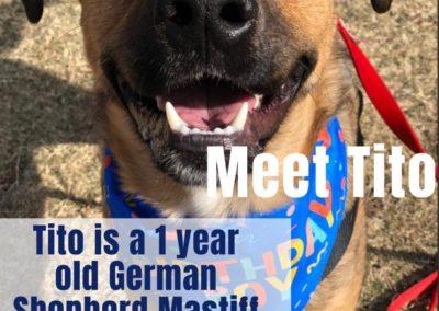 America's Hometown Hound contestant Tito