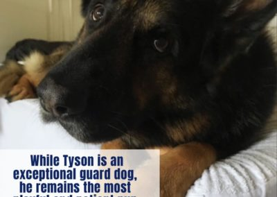 America's Hometown Hound contestant Tyson guard dog