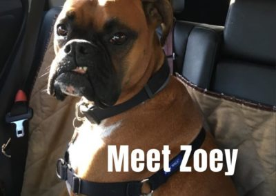 America's Hometown Hound contestant Zoey