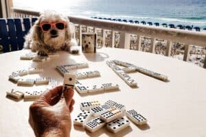 dog playing dominoes with family
